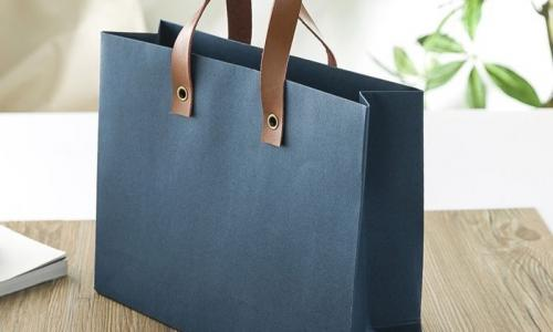 Luxury Paper Carry Bag