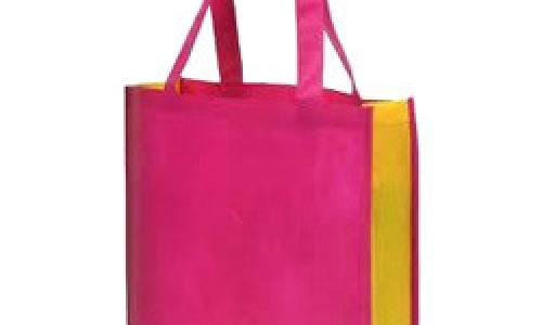 Non Woven Gift Carry Bags