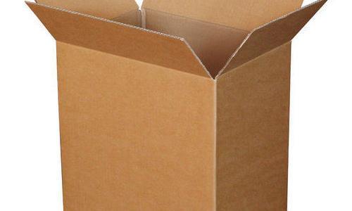 Packing Carton